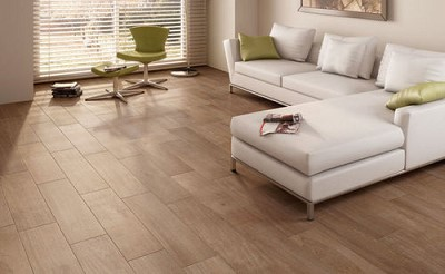 decoration salon carrelage parquet