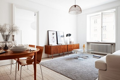 decoration scandinave appartement